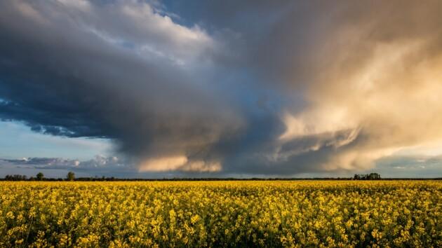Синоптики объявили штормовое предупреждение: ожидается сильный ветер, ливни и град