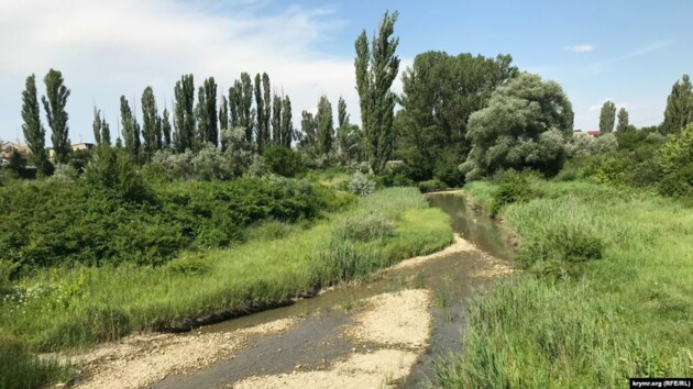 Из-за засухи в Крыму массово мелеют реки (фото)