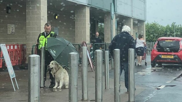 Сострадательный охранник магазина держал зонтик над головой у промокшего пса, фото