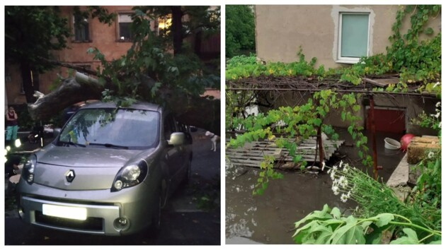 """Поваленные деревья и """"утонувшие"""" дворы: на Херсон обрушилась непогода (фото)"""