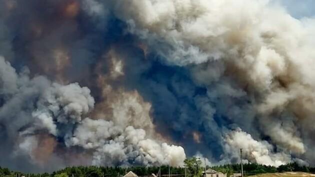 Масштабные пожары в Луганской области: в ОГА рассказали о последствиях