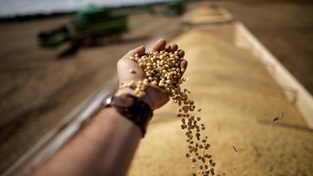 Украина установила рекорд продажи зерна за границу