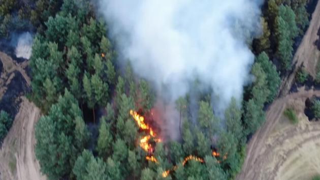 Пожары в Луганской области сняли на видео с беспилотника
