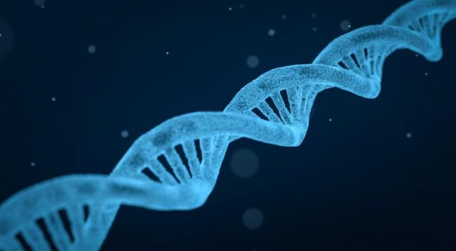Влияют ли гены на интеллект и склонность к вредным привычкам