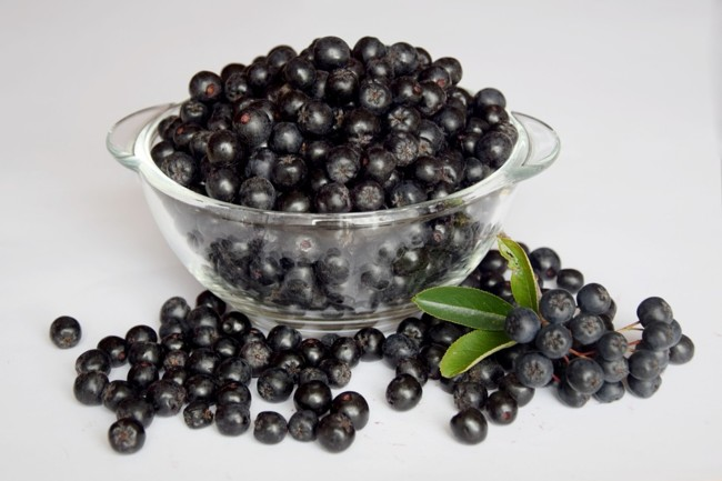 Chokeberry: Health Benefits And Harms