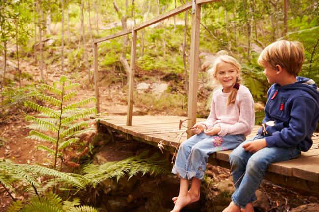 Ігри в лісах і парках підвищують імунітет дитини