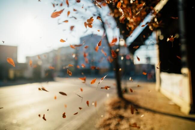 19 октября: какой сегодня праздник