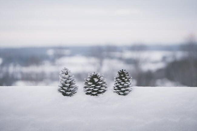 9 декабря: какой сегодня праздник