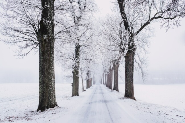 16 декабря: какой сегодня праздник