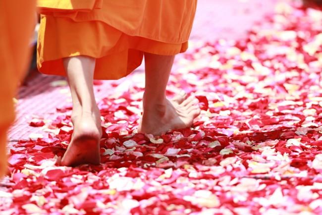 Несколько буддийских истин, которые сделают вашу жизнь проще. Афиша Днепра