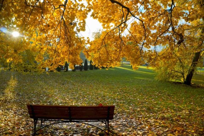 20 вересня: яке свято, прикмети дня і чого не можна робити