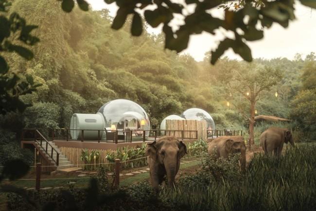 Готель з прозорими номерами-бульбашками в Таїланді
