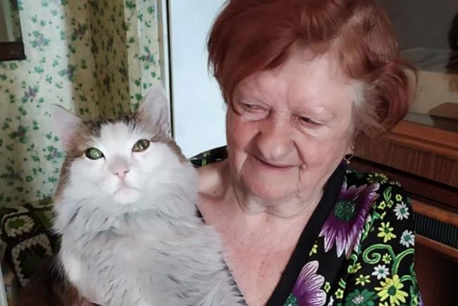 Кот в РФ спас хозяйку от пожара Фото: 74.ru