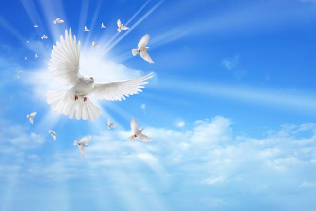 Сретение Господне отмечают 15 февраля