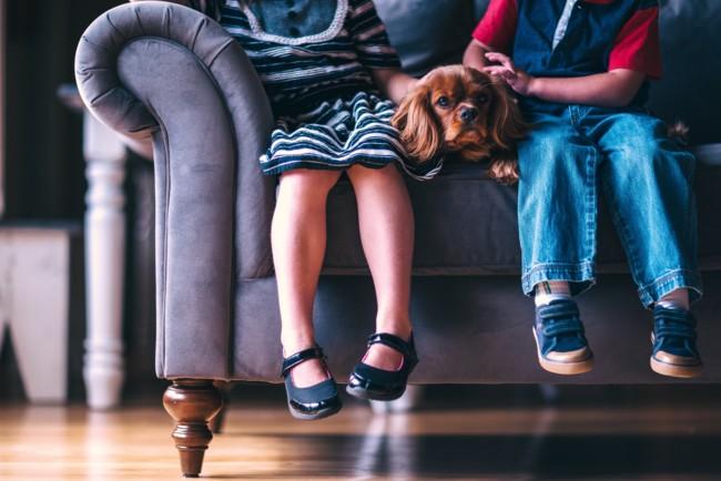 Чем заняться с детьми дома