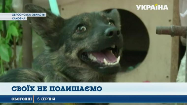 Новости Украины, последние новости и события от редакции ...