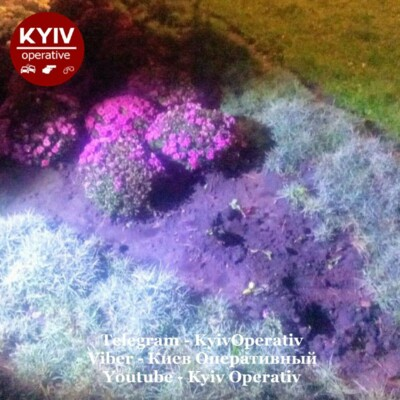 Фото: Киев Оперативный / Facebook