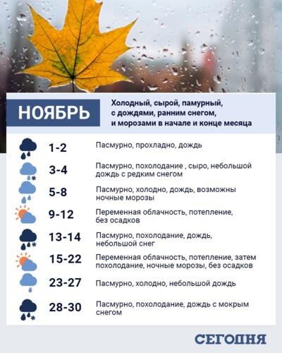 https://cdn.segodnya.ua/i/image_x500/media/image/5f9/993/be8/5f9993be84ad2.jpg