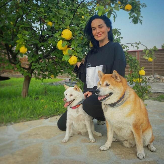 Международный день прав животных: любимцы Насти Каменских, Леси Никитюк и других звезд