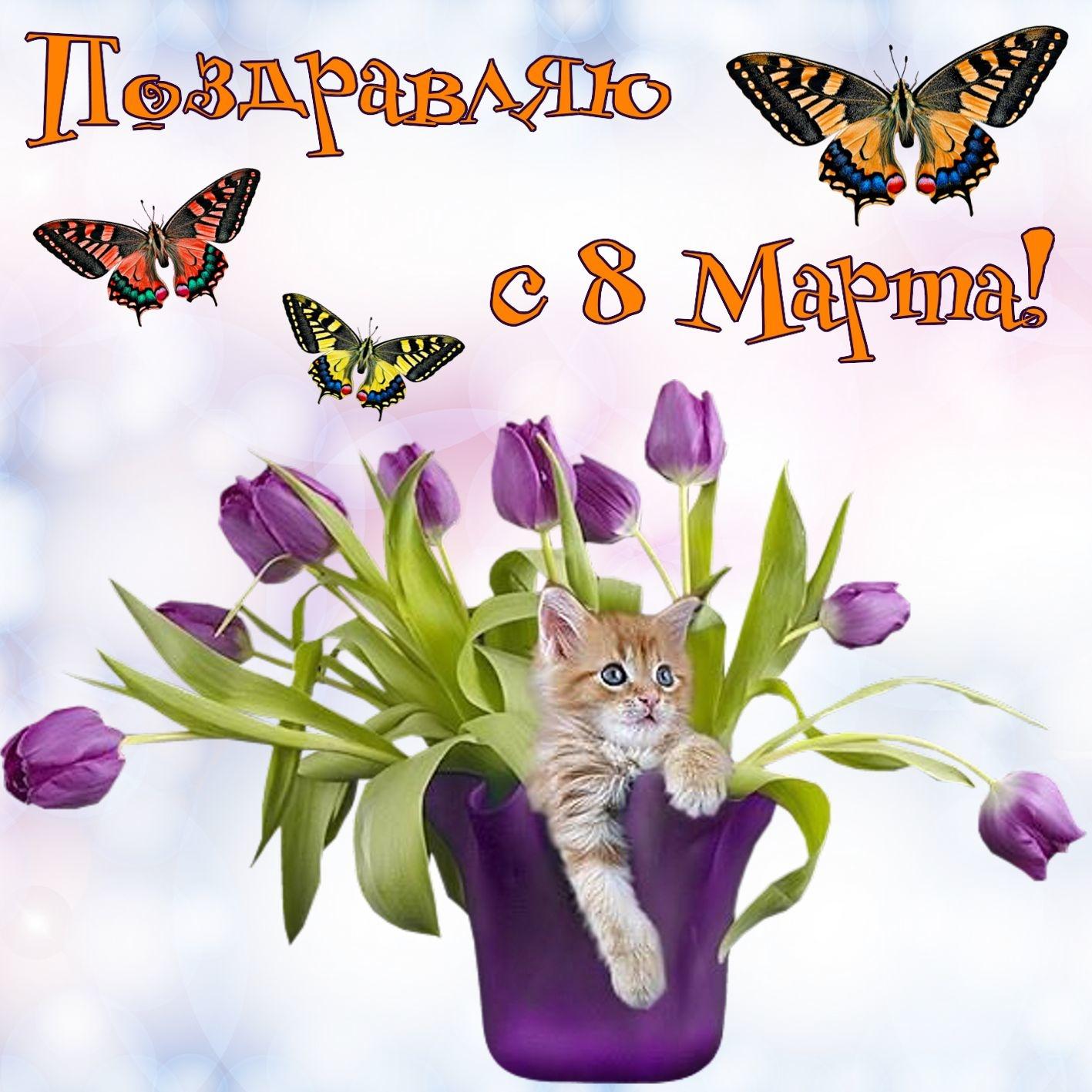 Месяцами, открытки скоро 8 марта фото красивые