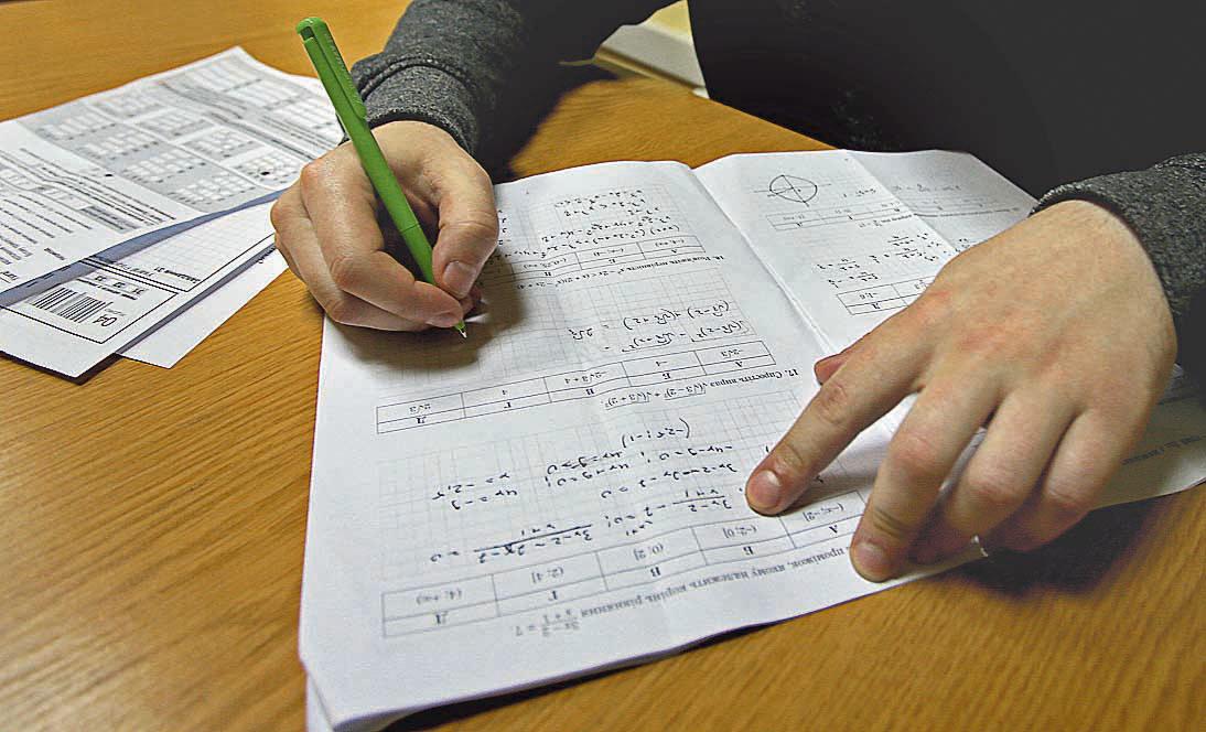 Жодного дня без плюса: батьки і вчителі б'ють на сполох через те, що ЗНО з математики стане обов'язковим, фото-2