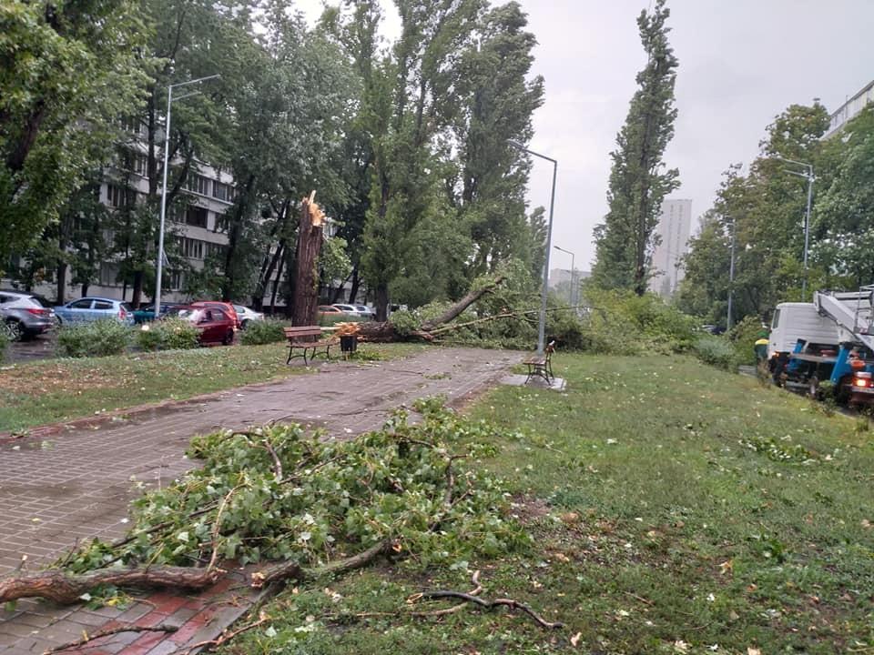 Фото: Kadirova до NEW Русанівка