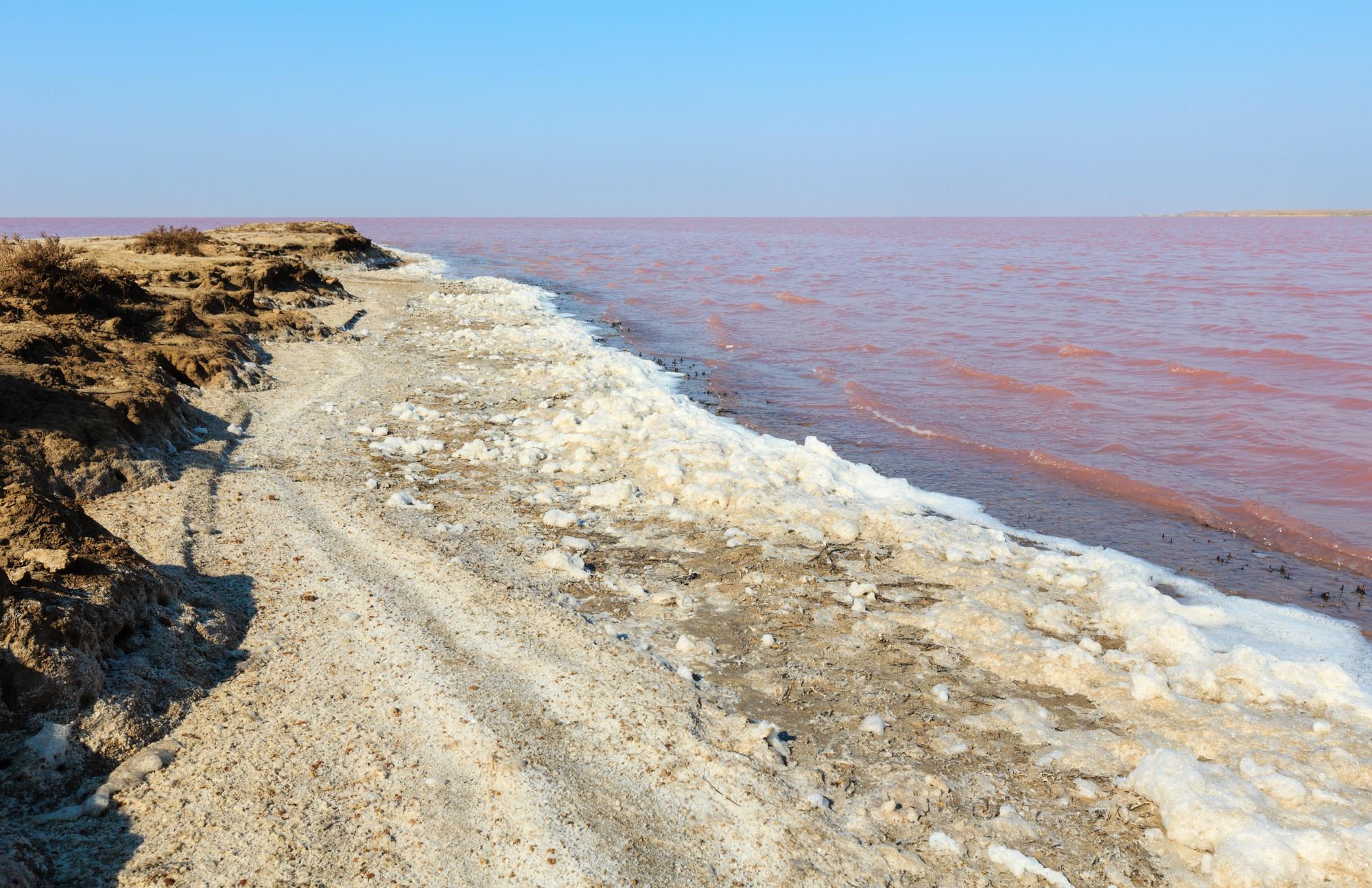 Рожеве озеро в Україні: де розташоване та лікувальні властивості, фото-1