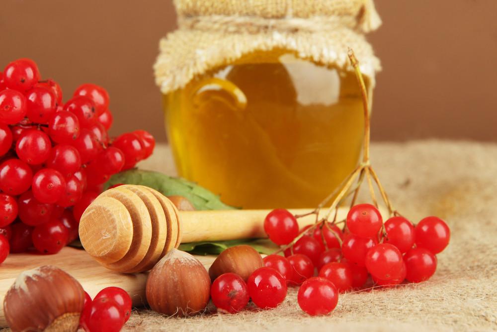 Калину можно заготовить с медом