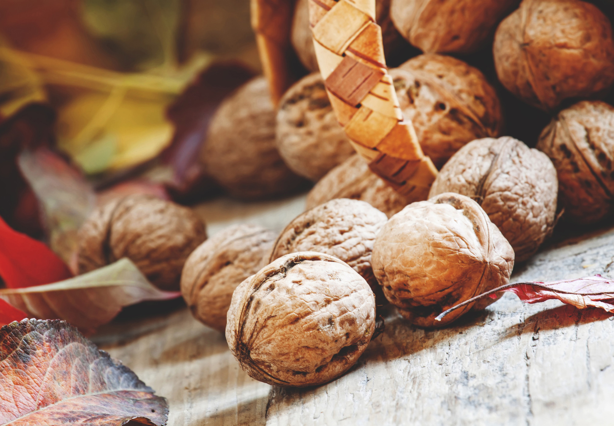 Грецкие орехи богаты антиоксидантами