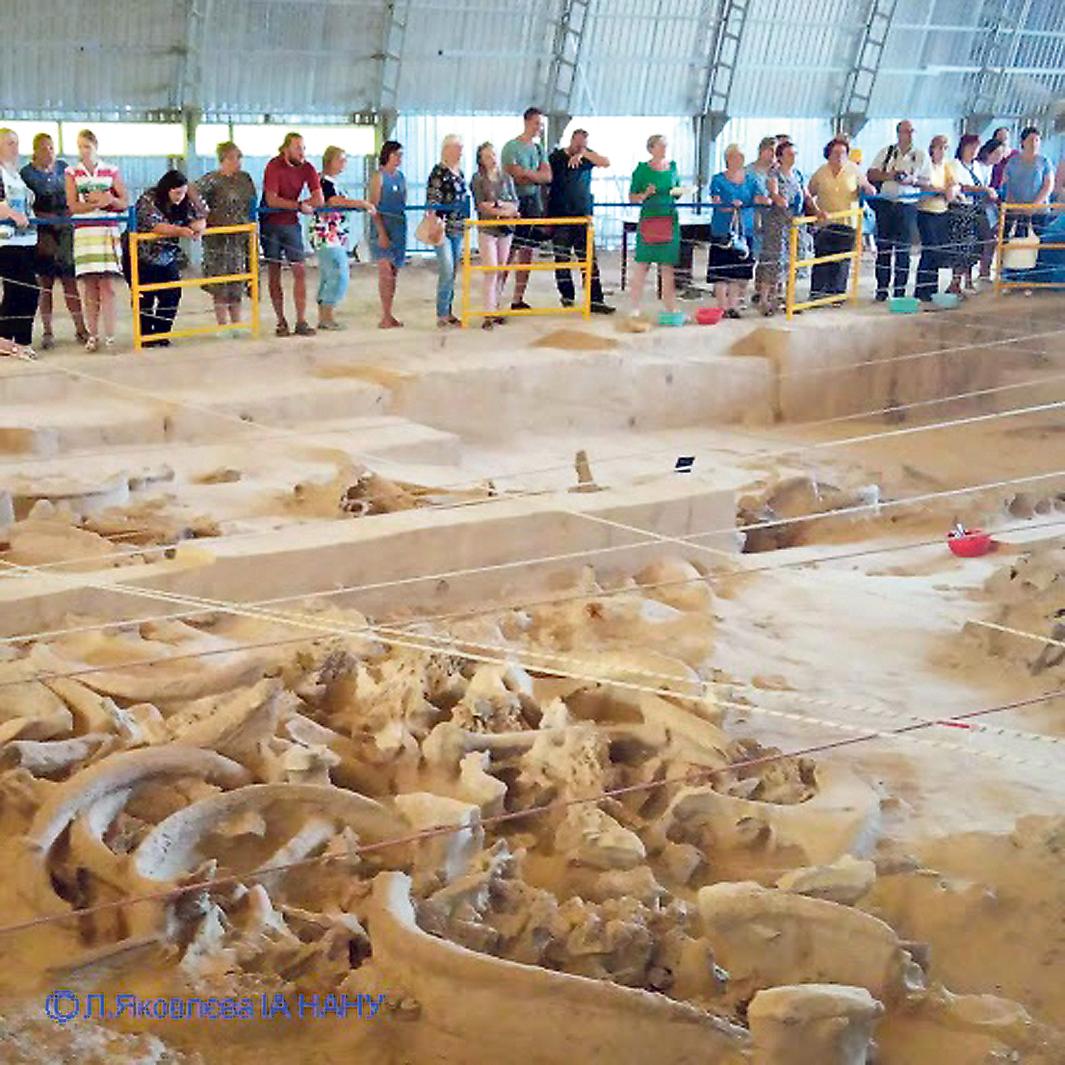 Хата из мамонта. На Полтавщине нашли в земле четыре жилища из костей