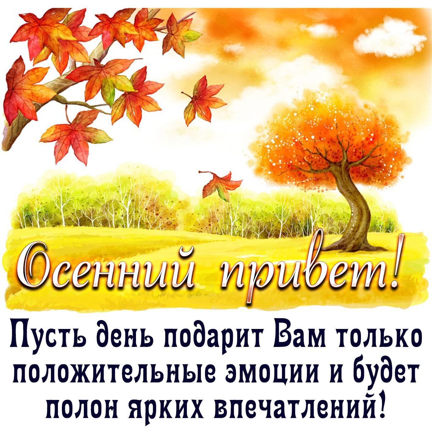 Днем, открытки с днем осеннего равноденствия