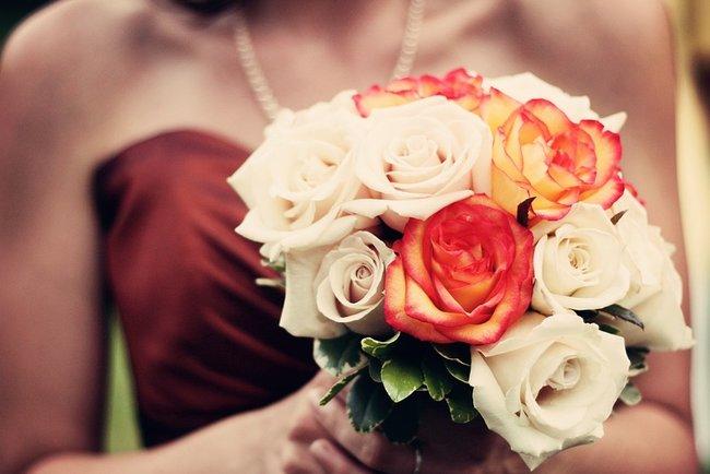 Сова напала на гостей свадьбы. Фото: pixabay