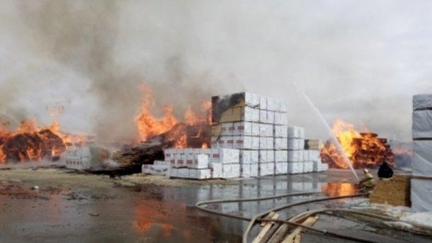Пожар в Ленинградской области. Фото: mchs.gov.ru