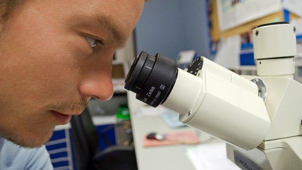 Ученые сделали открытие. Фото: pixabay