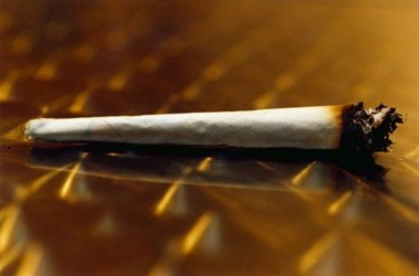 Конопля и табак что вреднее марихуана держится в организме дней