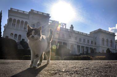 В Украине будет тепло. Фото: AFP