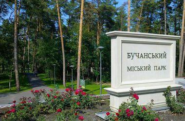В Буче кандидат устроил бесплатный обед для избирателей, фото с сайта ljrate.ru