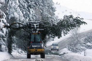 Причиной ДТП стали погодные условия. Фото: AFP