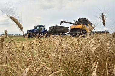 Павленко рассчитывает на рост экспорта зерновых. Фото: AFP