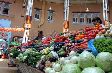 Украина попала в число стран, которые поставляют в ЕС больше всех продуктов