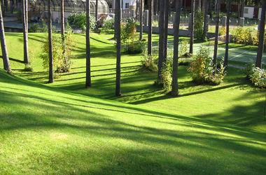 Озеленение. Фото:postroim.net