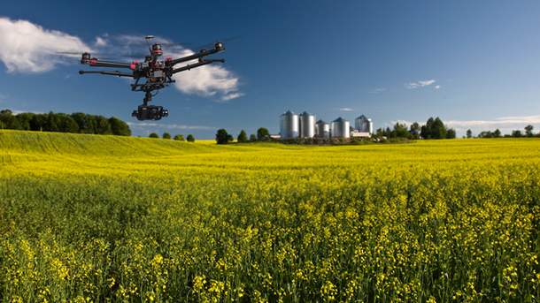 Инновации в сельском хозяйстве помогут повысить продуктивность. Фото: skyhasnolimits.com