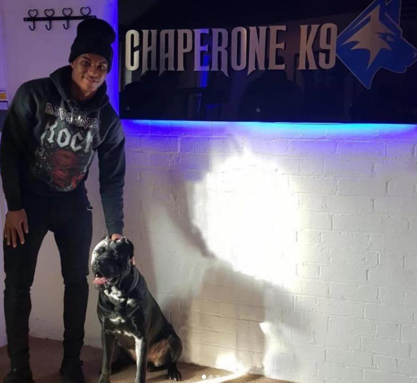 Погба купил сторожевую собаку за € 18 тыс., чтобы защититься от фанатов-ის სურათის შედეგი